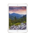 Фото Планшет Apple iPad mini 4 Wi-Fi 16GB Gold (MK9Q2RK/A)
